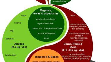 Dieta Emagrece dieta-paleo-364x205  Dieta