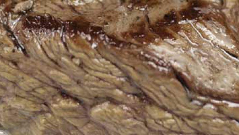 Carne assada na Coca-Cola Zero – Dieta Dukan Fase Ataque