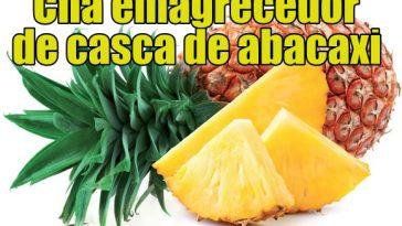 Dieta Emagrece Abacaxi-benefícios-e-propriedades-364x205  Dieta